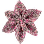 Star flower 4 hairslide plum lichen - PPMC