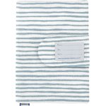 Health book cover striped blue gray glitter - PPMC