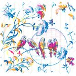 Cotton fabric extra475 - PPMC