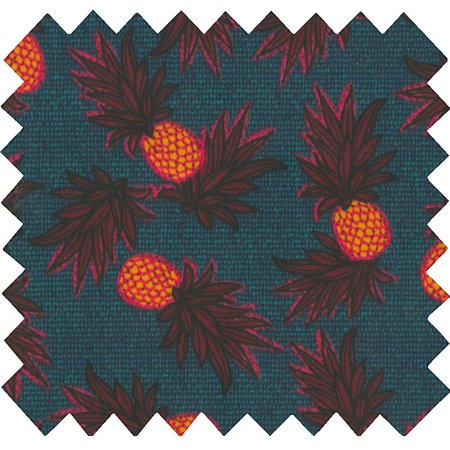Coated fabric pineapple party