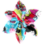 Star flower 4 hairslide kokeshis