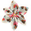 Star flower 4 hairslide watercolor confetti - PPMC