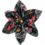 Star flower 4 hairslide grasses - PPMC