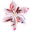 Star flower 4 hairslide herbier rose - PPMC
