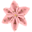 Star flower 4 hairslide powdered gold triangle - PPMC
