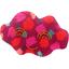 Cloud hair-clips pompons cerise - PPMC