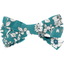 Ribbon bow hair slide celadon violette