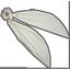 Foulchie  blanc pailleté - PPMC