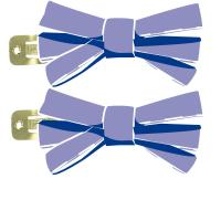 Small ribbons hair clips