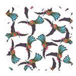 Gamme colibris
