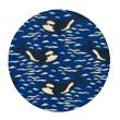 orque bleue- Collection Papa Pique et Maman Coud